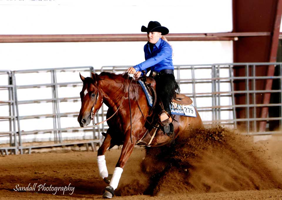 NRHA Derby Horse for Sale