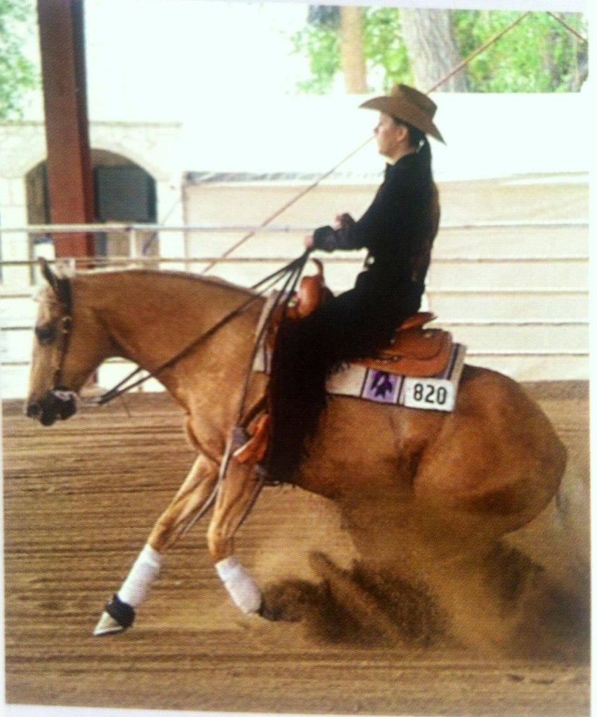 AQHyA World Show Qualifier and Finalist Jamie Cook